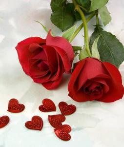 5 công thức làm đẹp với cánh hoa hồng